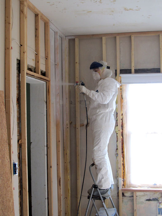 Insulation for Mold resistant insulation